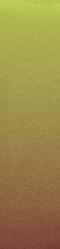 Custom longboard griptape #118044