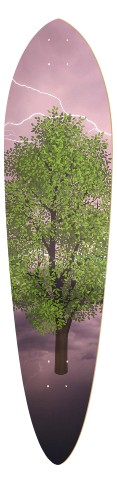 The Branching Night Classic Pintail 10.25 x 42