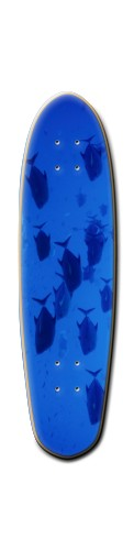 Custom Riviera Anatomy of a Skateboard 8 x 30 #196471