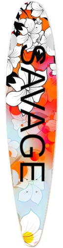 Classic Pintail 42 #213524