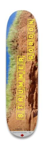 Strummer Gordon Park Skateboard 8.25 x 32.463