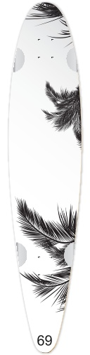 Classic Pintail 42 #234535