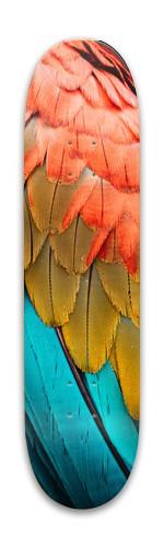 Animal skateboard Park Skateboard 7.88 x 31.495