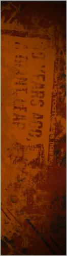 Custom Skateboard Griptape 9x34 in. #230119